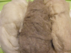 Eco-Friendly Patagonian Cashmere in White ($?/oz), Grey($?/oz) or Beige($?/oz)